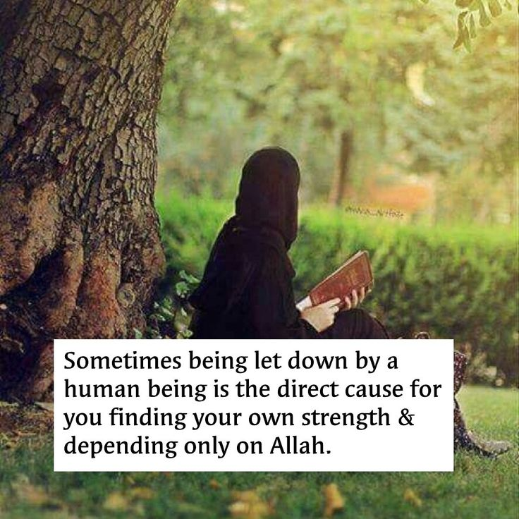 Allah will never let us down