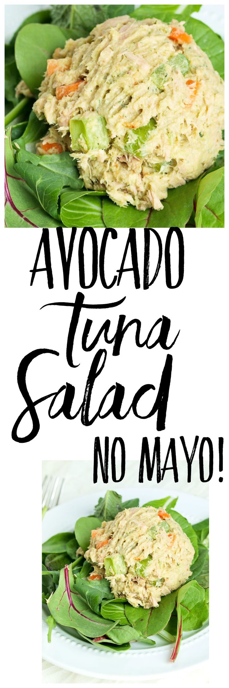 This Avocado Tuna Salad recipe is made with no mayo! This makes a great…