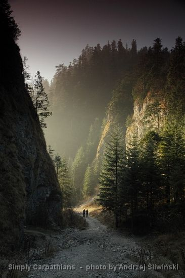 Hiking trail leads surrounded by steep walls of a gorge in the Pieniny Mountains. #Poland
