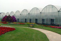 Commercial Green houses for sale