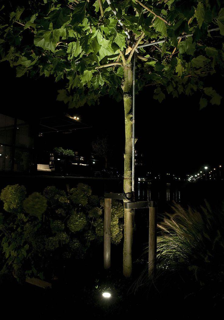 SCOPE   in-lite - Met het gebundelde licht van LED tuinspot SCOPE  licht je speciale plekken in de tuin uit zoals bomen, struiken, beelden en gevels.    Prijs (incl. BTW) € 89,00 *  vanaf 1 oktober 2013 verkrijgbaar in een actiepakket