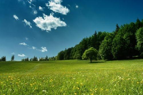 Bükk Mountains #Hungary #nature
