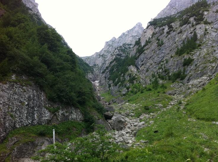 Valea Albă, Bușteni