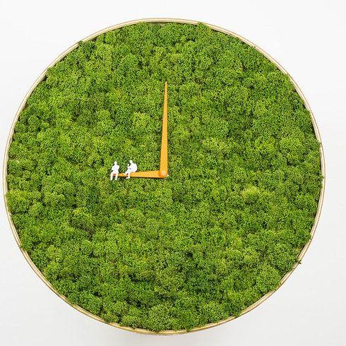 不可思議な苔の時計。   感覚を刺激する22のアート&デザイン
