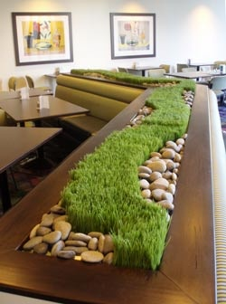 cool grass arrangement