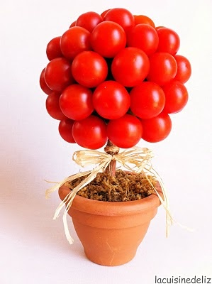 "tree of tomato ""ciliegino"""