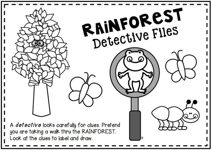 Rainforest Activities for Primary Learners. Learn about the rainforest ...