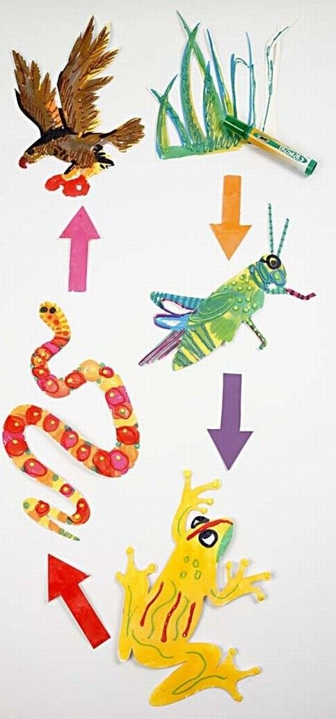 NATURE: Decorate Teach Me figures with motifs from the food chain using markers. Create effect with lines made with 3D Puff Liner, puffed up with a heat gun. An easy activity for a rainy day, the holidays, children starting school and for the holiday camp.