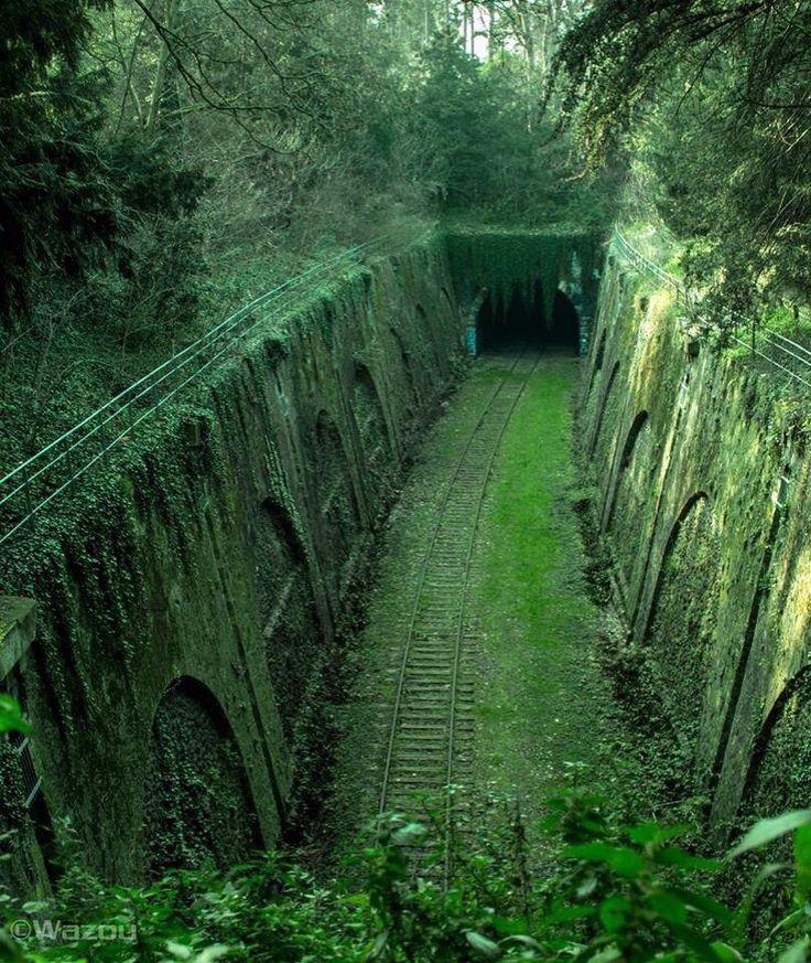 Paris –La voie de la petite ceinture abandonnée au parc  Montsouris