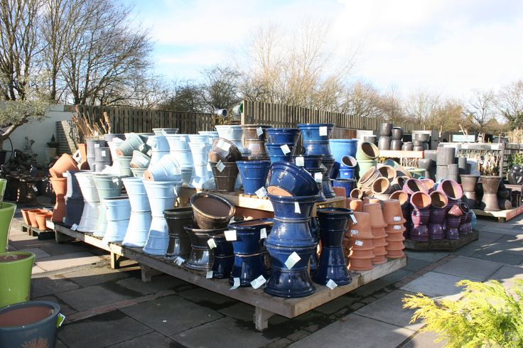 A huge range of pots and containers in all shapes and sizes.