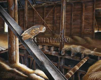 Hide and Seek - Barn Owl  www.levitskyart.com