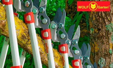 WOLF-Garten makes the best cutting tree loppers on the market. Made in Germany since 1922. Discover the WOLF-Garten Difference.