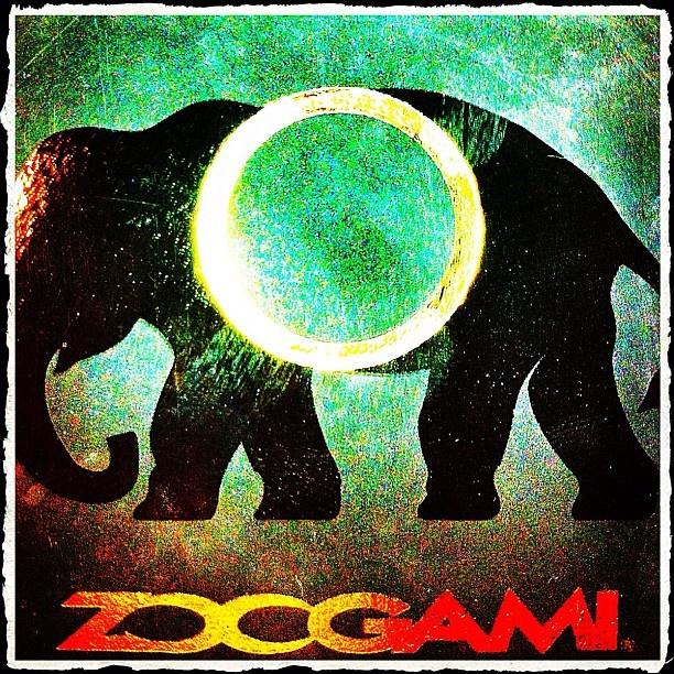 I'm Zoogamian - @gaetanocosta- #webstagram