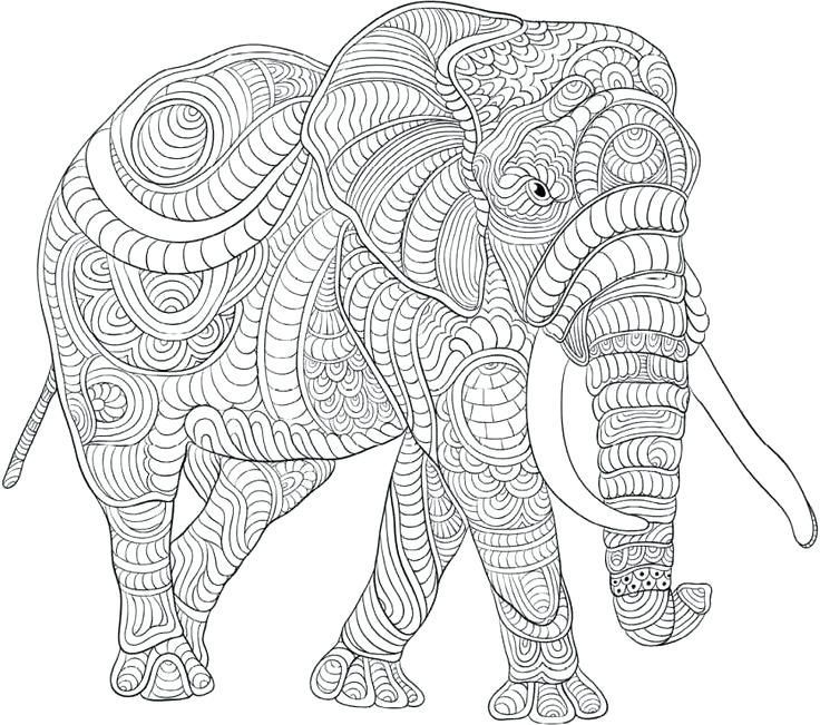 Elephant Coloring Pages For Adults Best Coloring Pages For Kids Elefant Ausmalbild Ausmalbilder Ausmalen