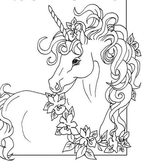 5061 best Unicorns images on Pinterest
