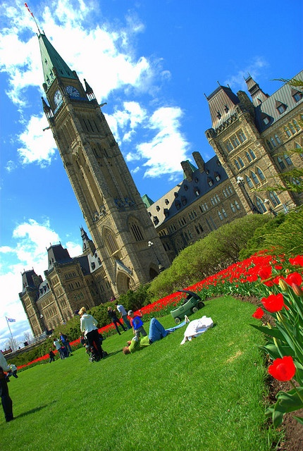 The famous Ottawa Tulip Festival by SP studio on FlickR