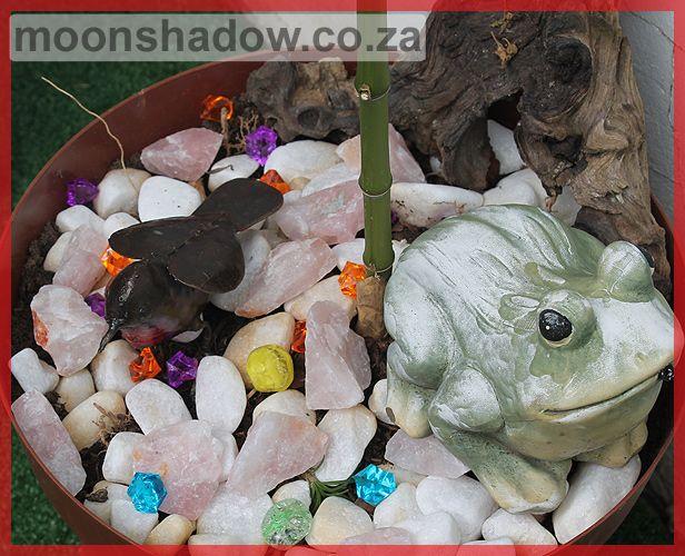 Rose quartz, driftwood and beads make for lovely pot plant décor. #Moonshdow #Swellendam #SouthAfrica