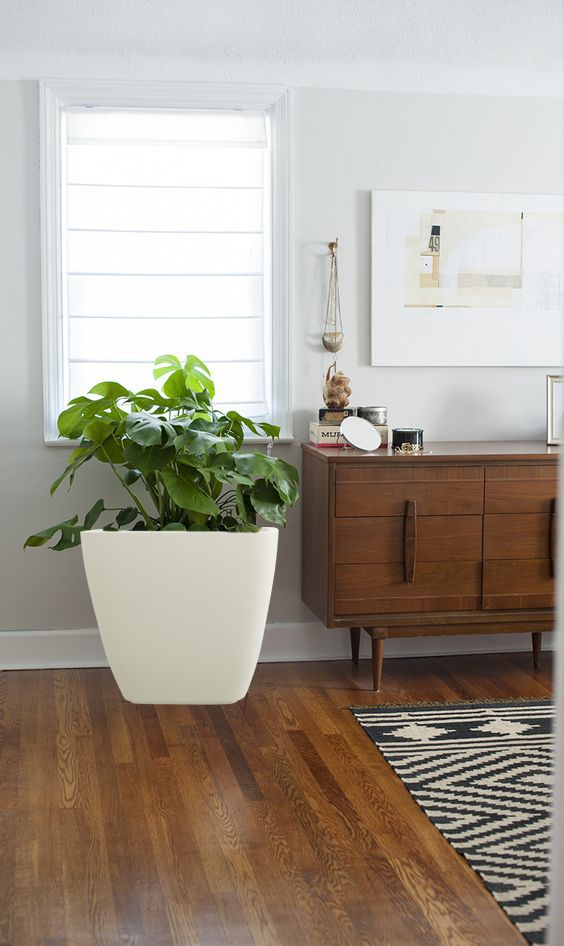 skillful design plant pots cheap. https www yuccabeitalia com  Hybrid polymer planters are most picked 11 best buy online in india images on Pinterest Goa