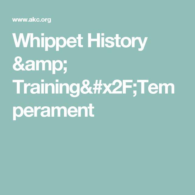 Whippet History & Training/Temperament