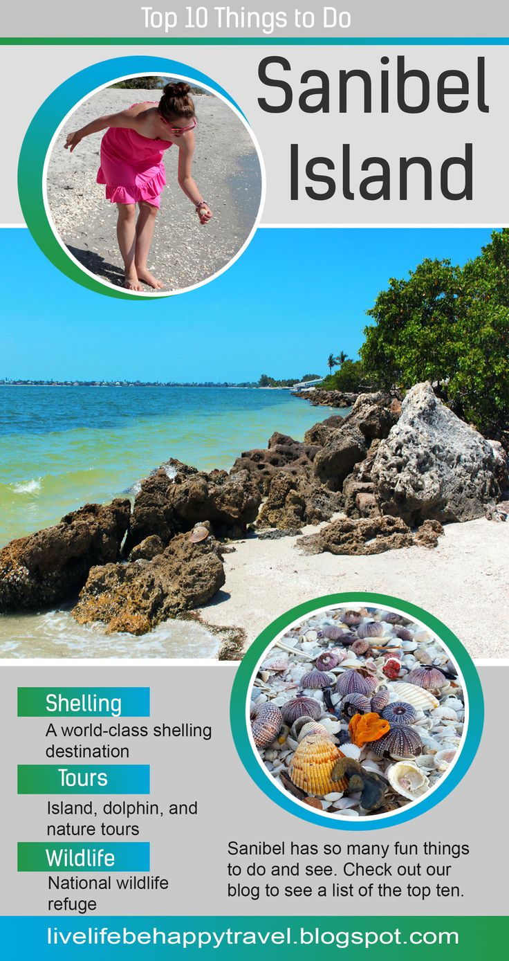 The Top 10 Things to Do on Sanibel Island – Florida
