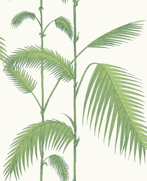 Palm - Leaf Green On White