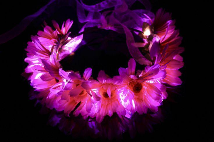 Glowing Cat Ears Flowers