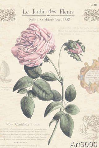 Maria Mendez - Le Jardin des Fleurs IV
