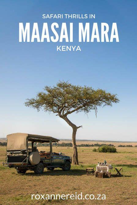 Safari thrills in the Maasai Mara, #Kenya #safari #wildlife