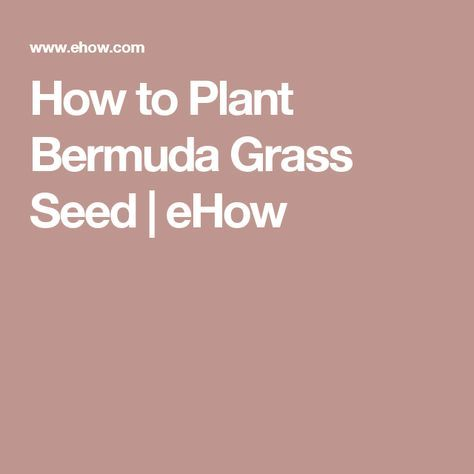 How to Plant Bermuda Grass Seed | eHow