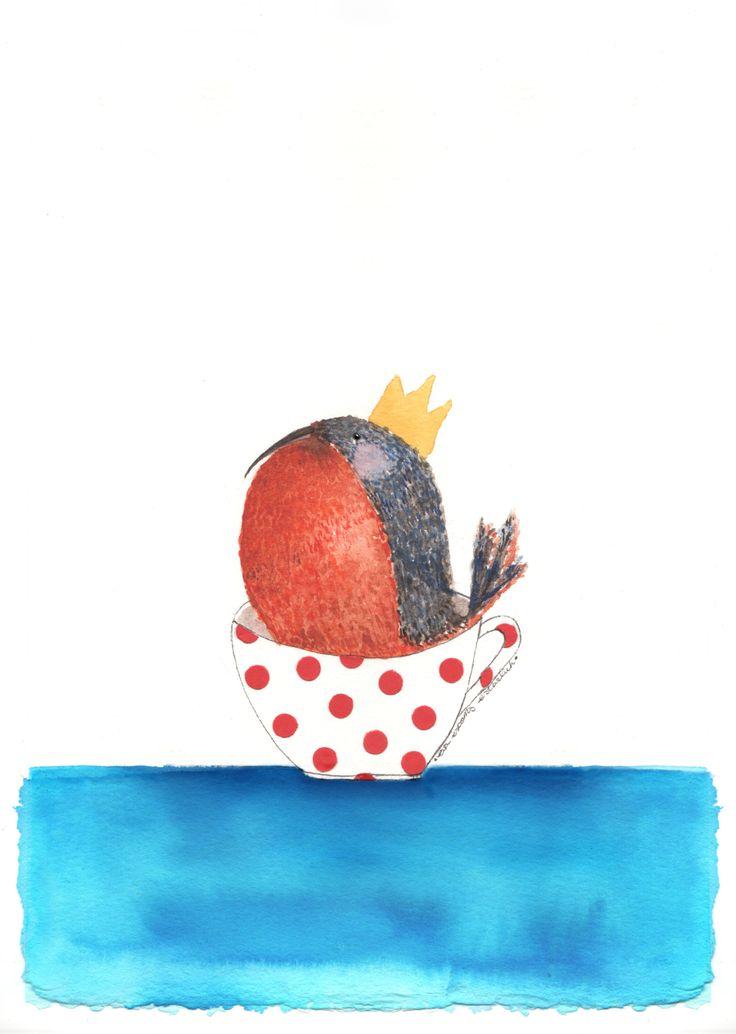 El somni del Pit-roig. Illustration by eva escoms estarlich