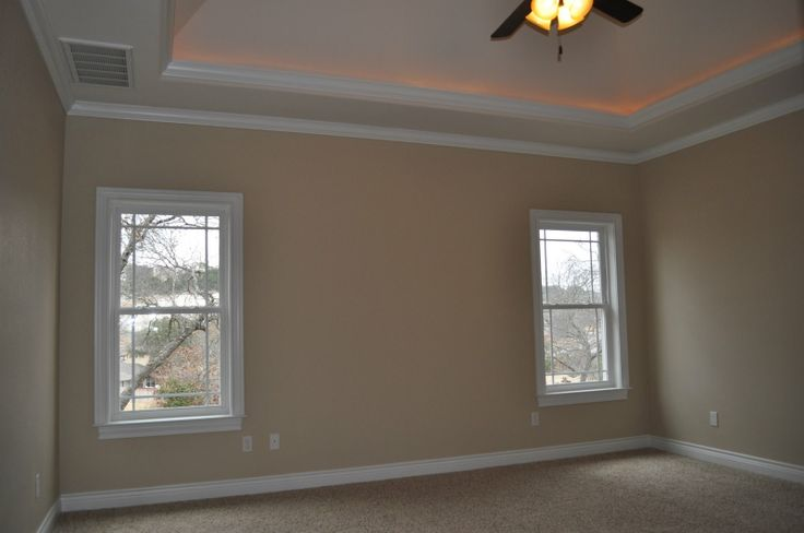 tray ceiling crown molding with lights Ceilings