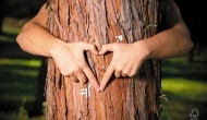 5 steps to becoming FSC Forest Management or Chain of Custody certified.