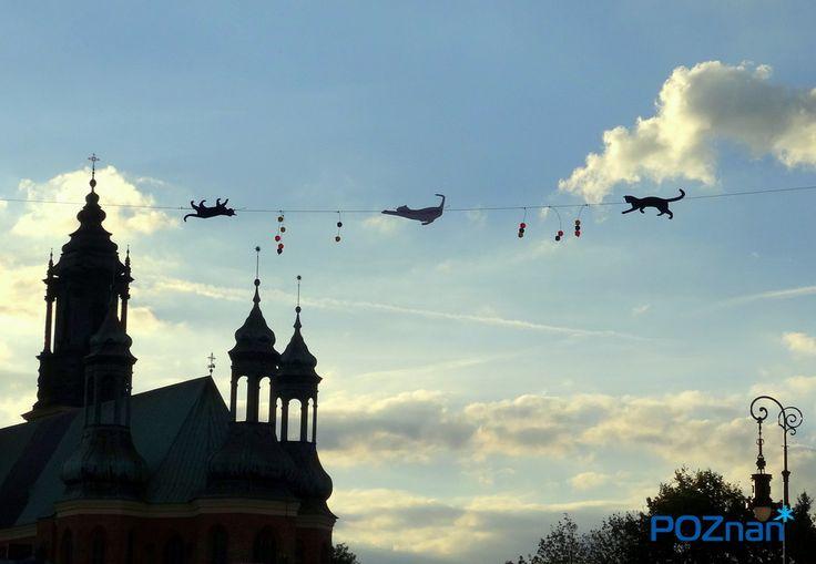 Poznan Poland, Śródka [fot. M. Cieślak]