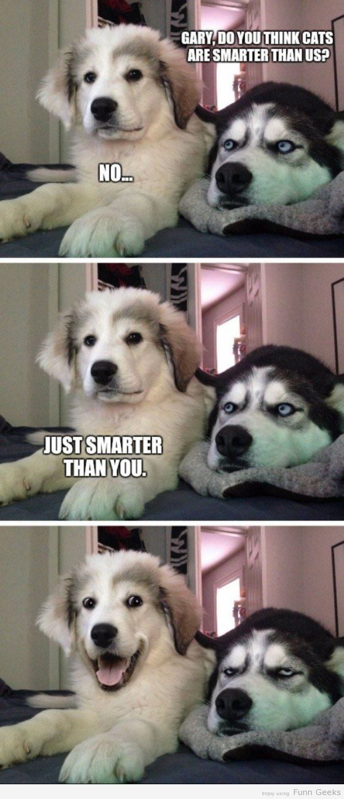 Are Cats Smarter funny imagesFunny Pictures Epic Fails Funny Planet iPhone Autocorrects Awkward Texts LOL Photos Hilarious Animal LOLs
