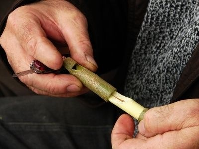 How to Make a Reed Flute