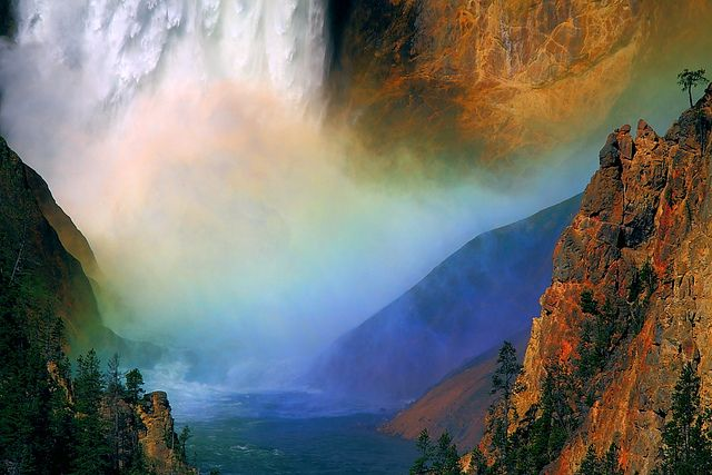 IMG_2364 Lower Falls, Yellowstone National Park, via Flickr.