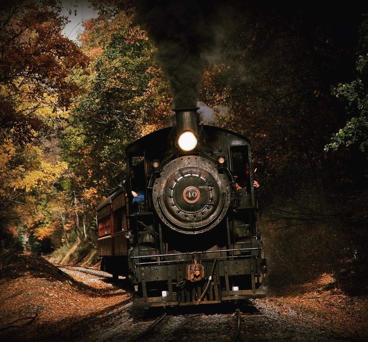 NewHope Ivyland train excursions .. includes Halloween and Mystery dinners