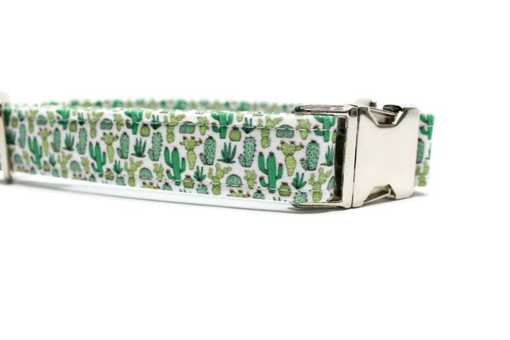 Cactus Dog Collar | Your choice of metal buckle or plastic buckle | Unique Dog Collar | Girl Dog Collar | Boy Dog Collar | Desert Dog Collar by 4BlackPaws on Etsy https://www.etsy.com/listing/473694822/cactus-dog-collar-your-choice-of-metal