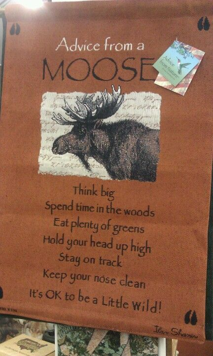 "Moose philosophy - this would be good hanging where you can see it daily - right beside the ""think like a tree"" poster"