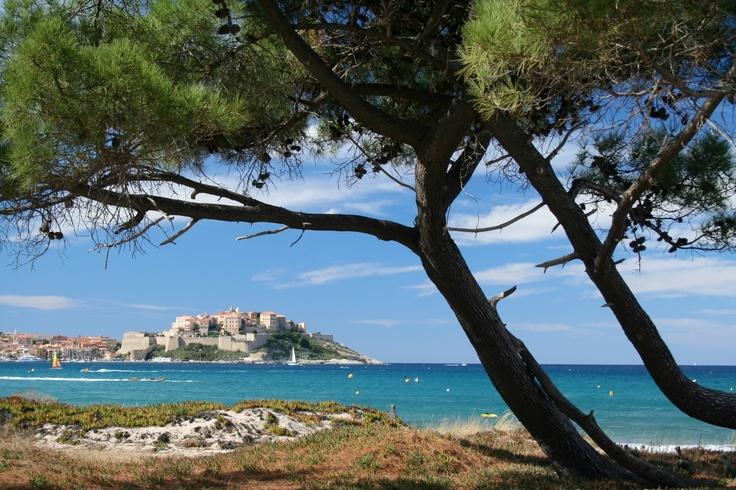 Corsica - Corse - Calvi, vue de la citadelle depuis la plage
