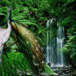 Descargar Imágenes De Cascadas Con Movimiento De Agua Gratis