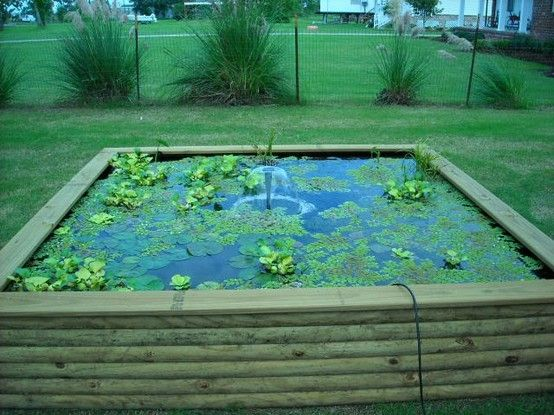 17 best ideas about above ground pond on pinterest fish Above ground koi pond design ideas