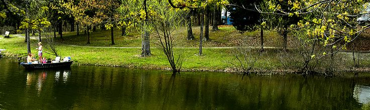 Camping :Lake Charles State Park, Arkansas