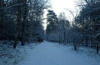 Hardlopen in de winter doe je zo!