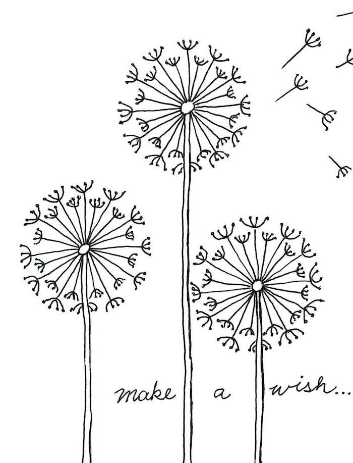 1001 Images De Dessin De Fleur Pour Apprendre à