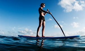 Groupon - Two-Hour Canoe, Kayak, or Standup-Paddleboard Rental at Captain John's Fawn Harbor & Marina (Up to 51% Off) in Big Bear. Groupon deal price: $17