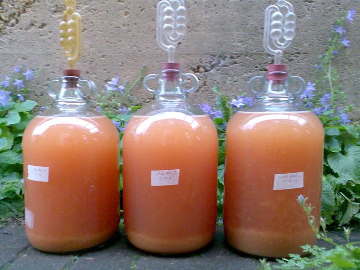 Ben's Adventures in Wine Making: Crab Apple Wine 2014 - The Making Of ...