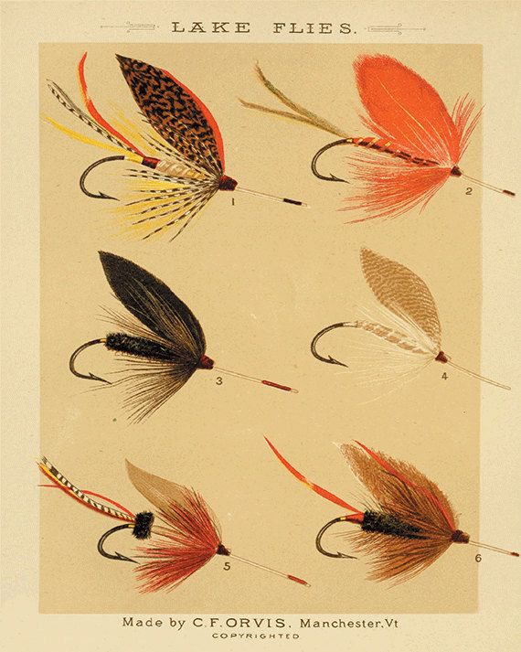 Lake flies fishing print fly fishing art by VictorianWallArt