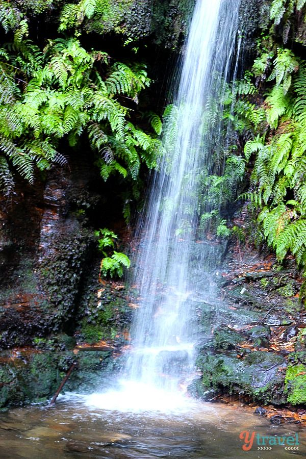 Beautiful waterfalls in the Blue Mountains - top getaway from Sydney, Australia for your bucket list.