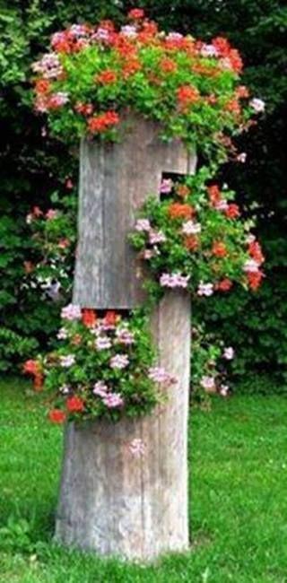 Tronco d'albero trasformato in fioriera